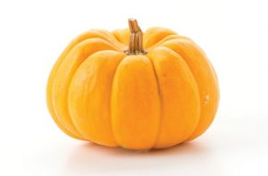 bundeva - pumpkin in serbian