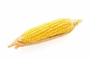 kukuruz - corn in serbian