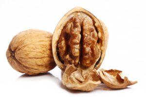 orah - walnut in serbian
